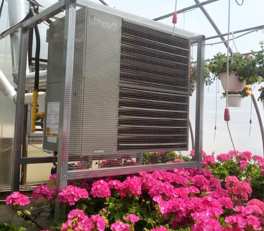 T_C_Greenhouses